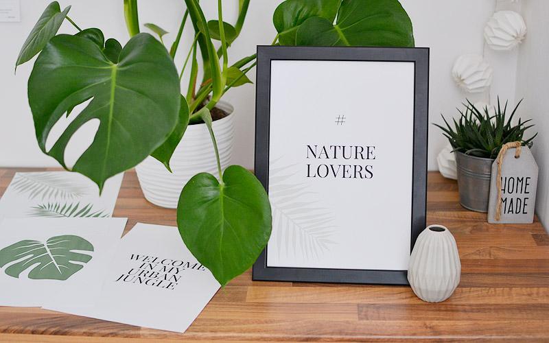 Plakaty botaniczne z roślinami do druku