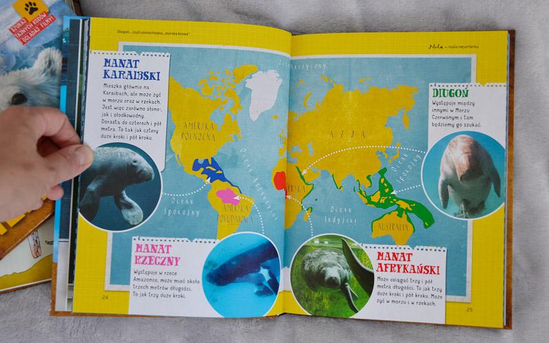 Nie zabraknie morskich zwierząt