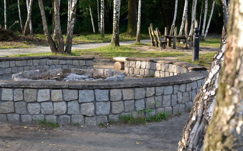 Staw rzęsa Siemianowice Śląskie