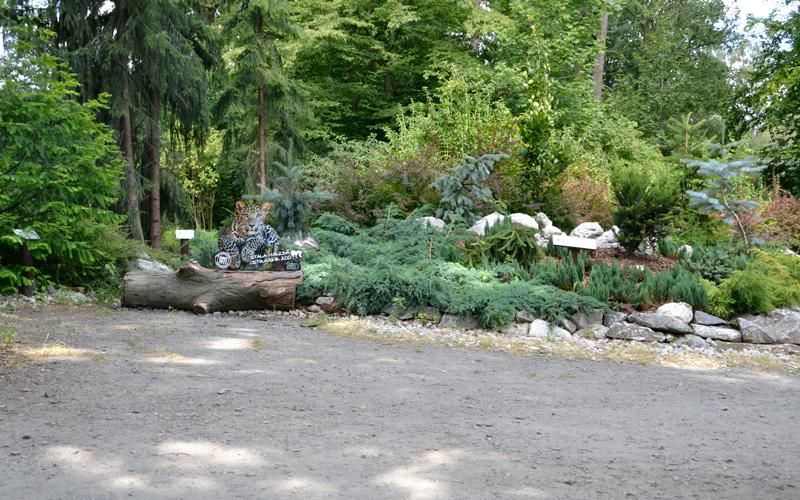 Zoo w Ostrawie - rośliny