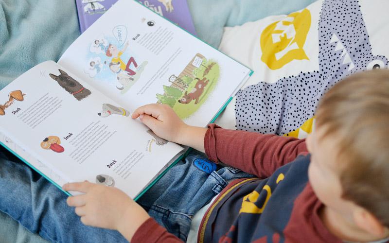 Wszystko o psach i krowach - książki o zwierzętach dla dzieci