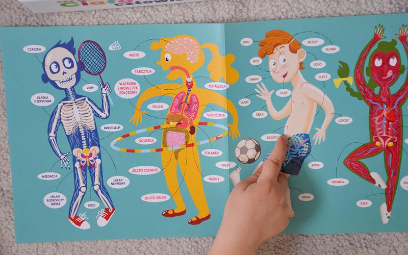 Ciało człowieka - Fajne gry edukacyjne dla dzieci