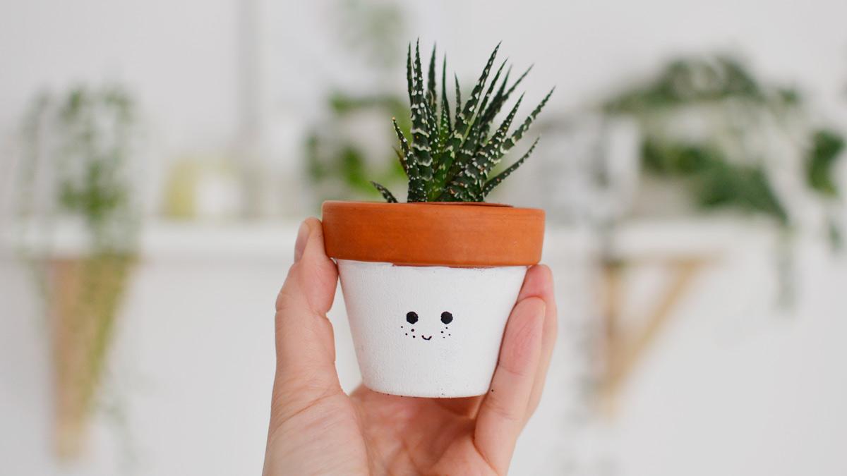 Jak podlewać rośliny doniczkowe?