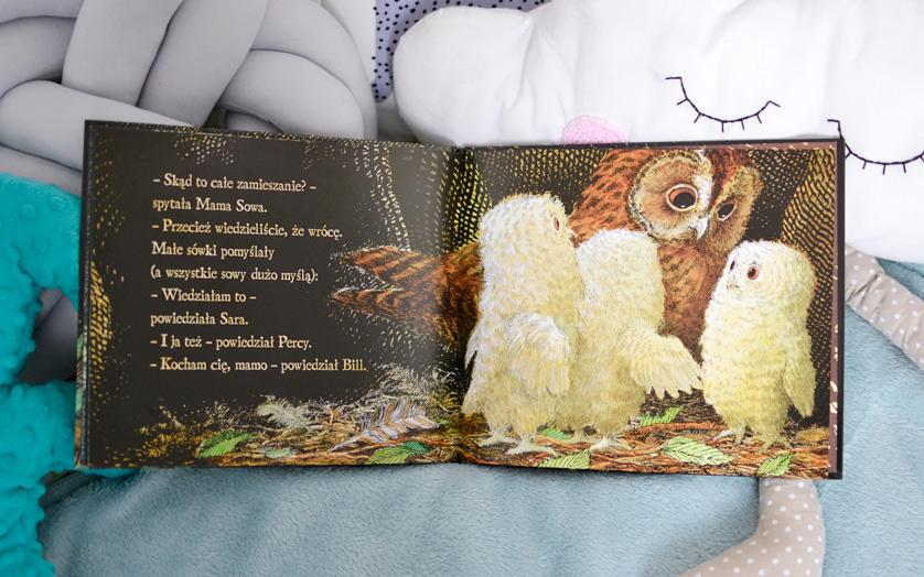 Małe Sówki - recenzja książki i zdjęcia