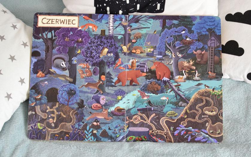 Rok w lesie -  zdjęcia książki