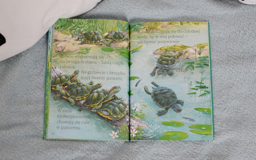 W stawie - zdjęcia książki