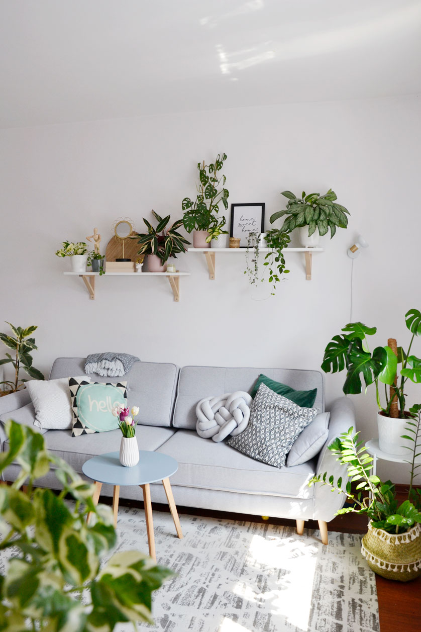 Moja domowa dżungla w salonie
