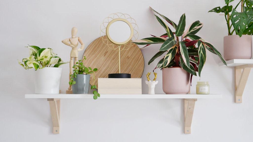 Wiszące półki na kwiaty w salonie z Ikea