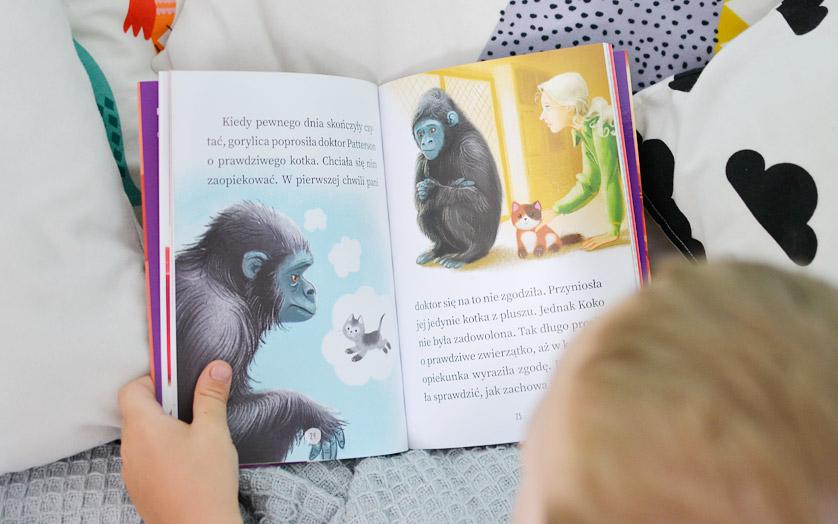 Koko uczy się migać - recenzja, zdjęcia książki